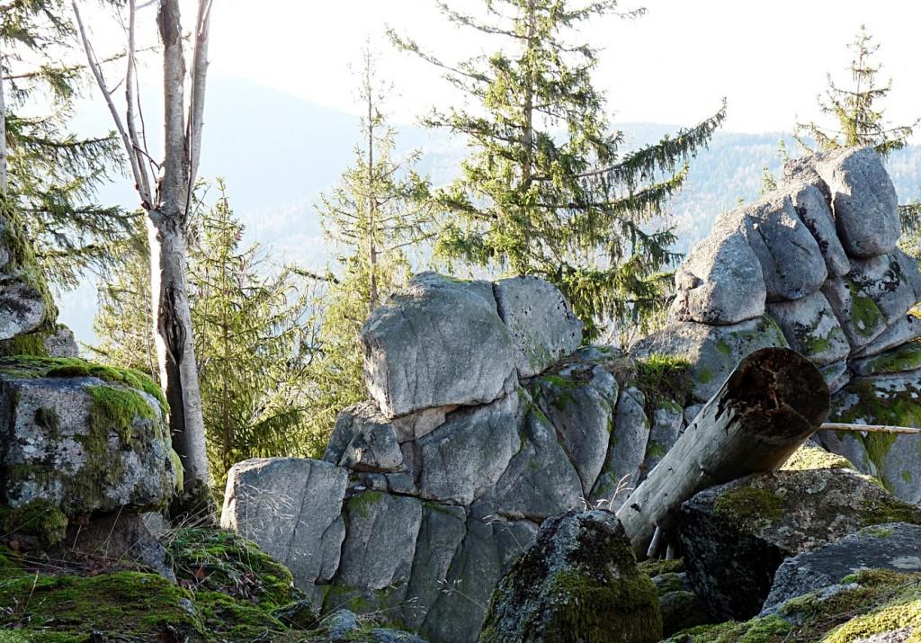 70_Die_Hohe_Schaar_im_Schwarzwald