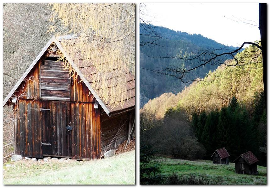 Rundwanderung im Schwarzwald - Die_Heuhütten_im_Herbst
