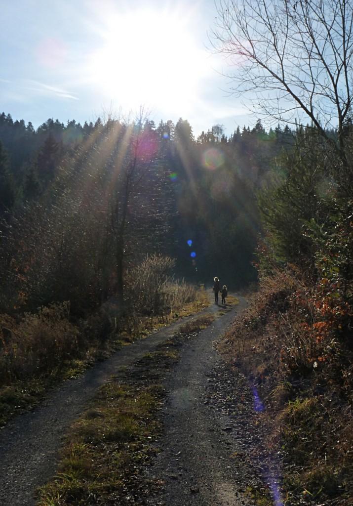 19_Schönes_Winterlicht