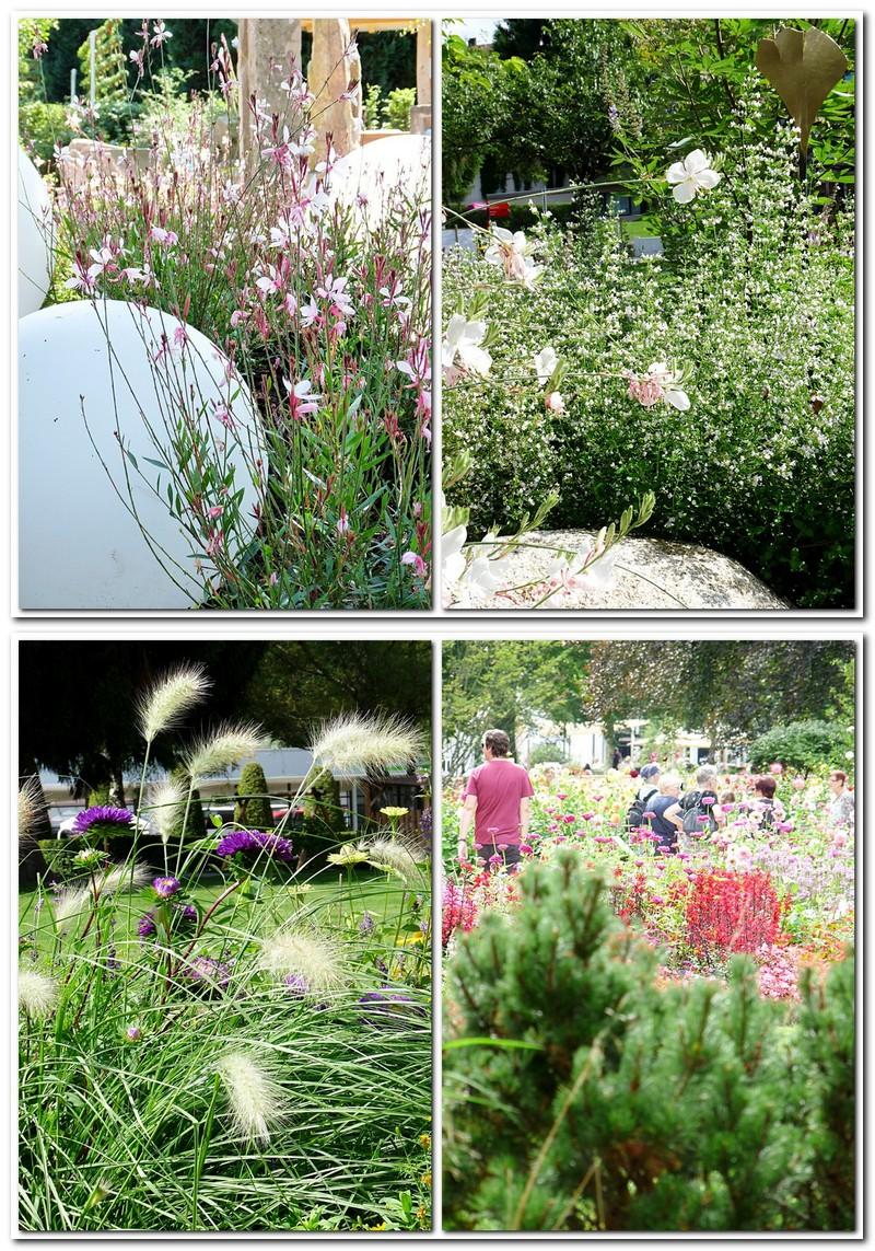 so üppig blüht es auf der kleinen Gartenschau in Bad Herrenalb