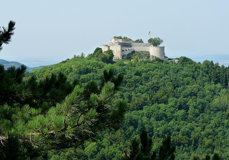 6_Ausblick auf die Burg Hohenneuffen