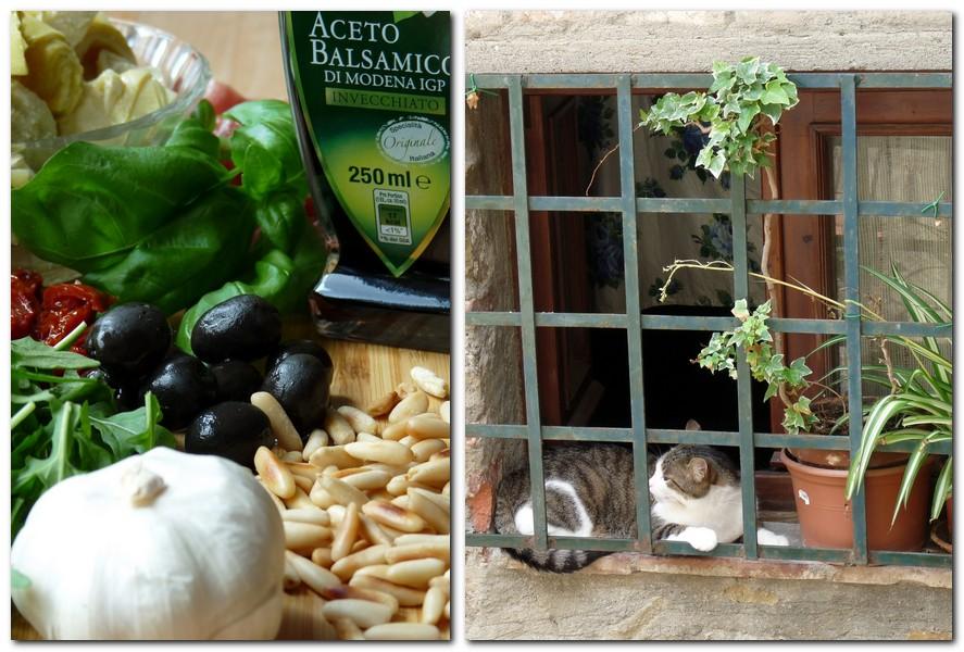 Oliven und Katze