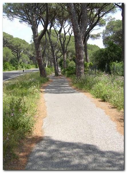 Radweg nach Castiglione
