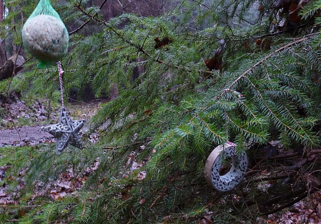 Tannenbaum mit Vogelfutter