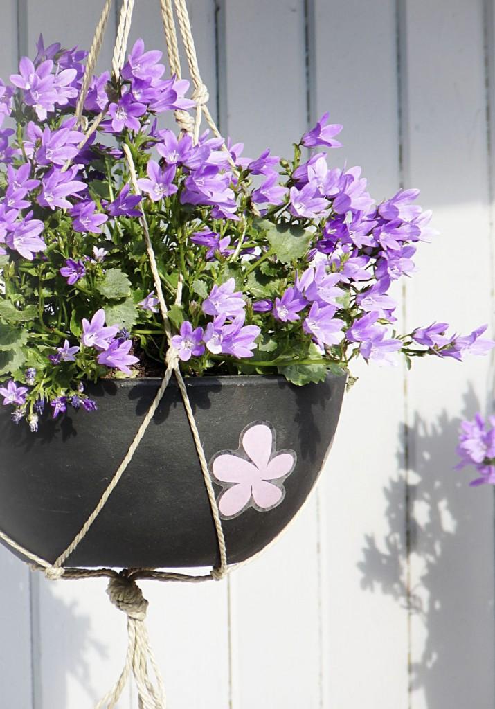 4_Blumenampel mit Blumen_1