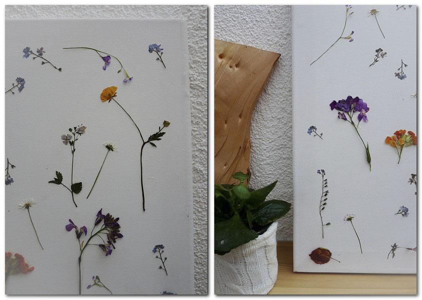6_gepresste Blüten_1