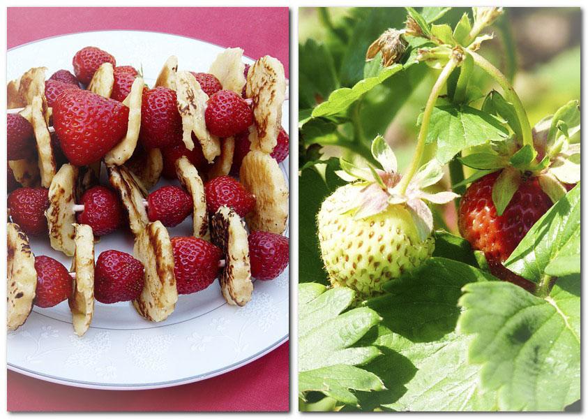 Erdbeeren und Pfannkuchen_1