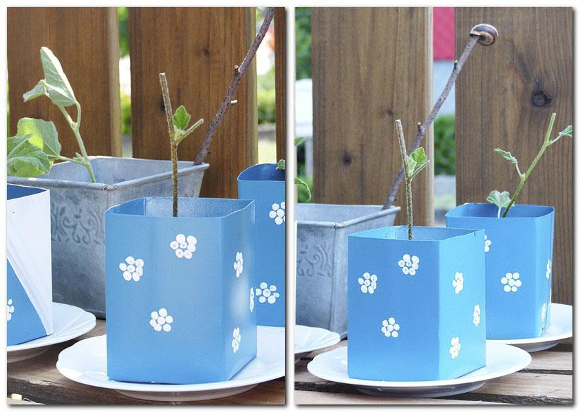 2_Pflanztöpfchen für Stecklinge aus Tetrapack gebastelt_1