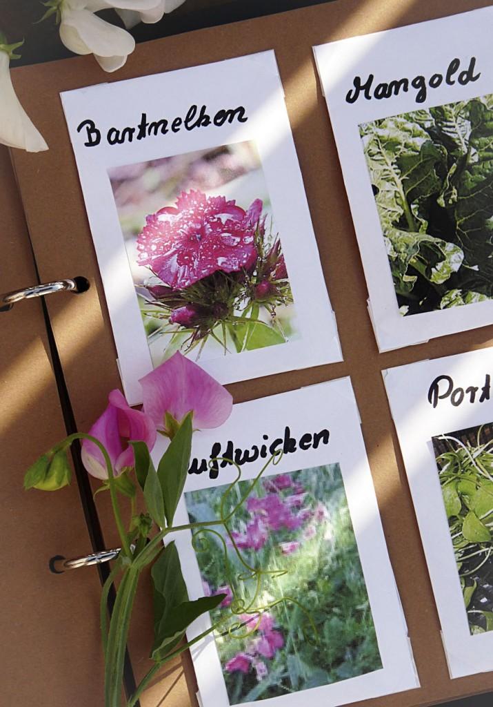 3_Samentütchen im Gartenkalender_1