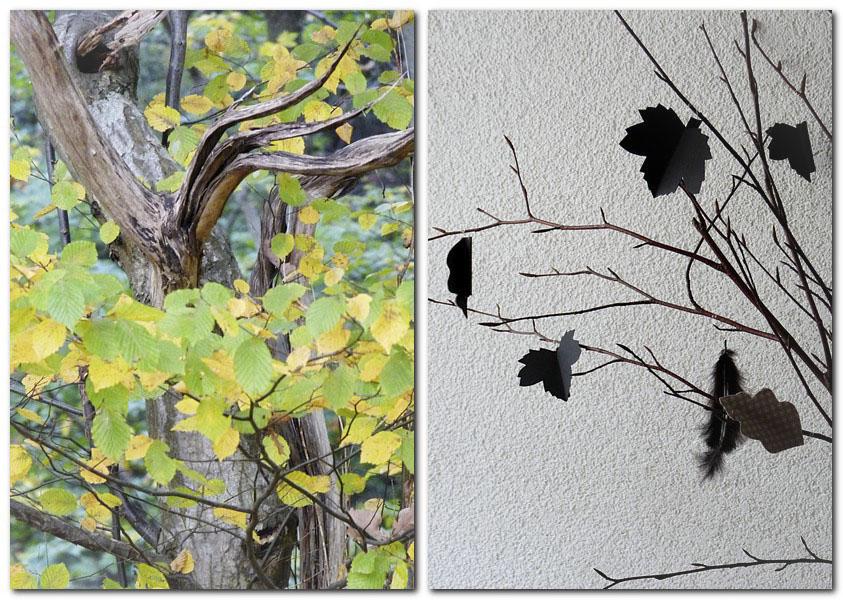 Baum mit Herbstlaub
