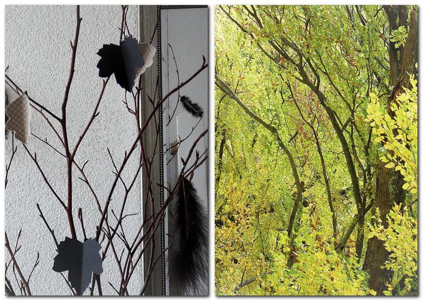 Herbstblätter im Herbstwald