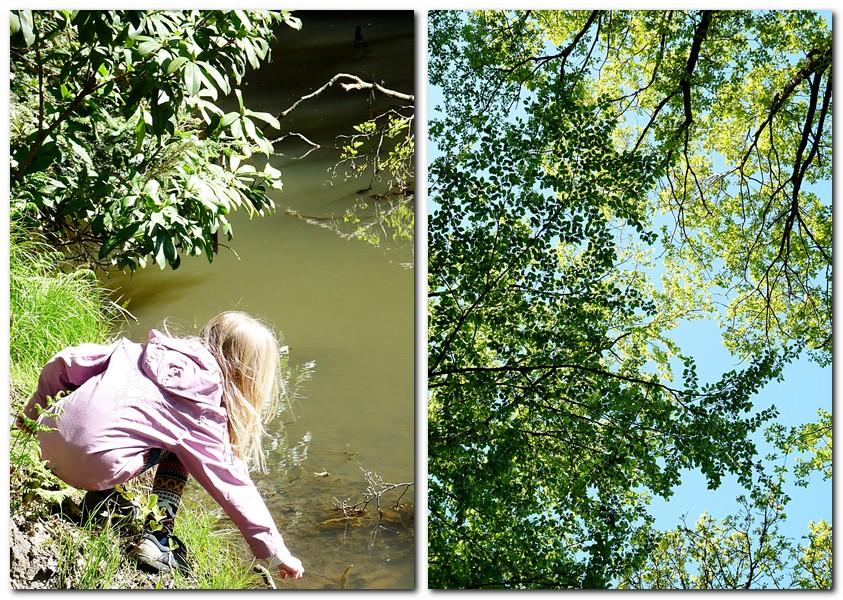 Nordschwarzwald wandern mit kindern
