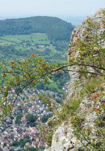 8_Ausblick von der Burg Hohenneuffen