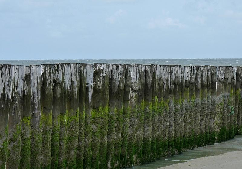 18_Burgh Haamstede in Zeeland am Strand