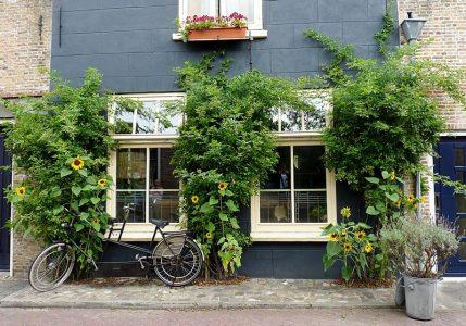 8_Zierikzee auf Zeeland