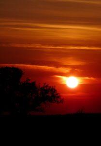 Sonnenaufgang vom Heerweg