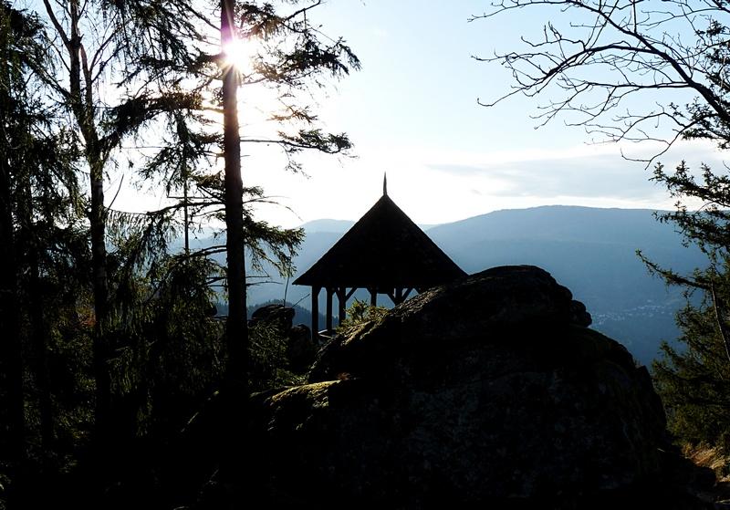 Blog aus dem Schwarzwald