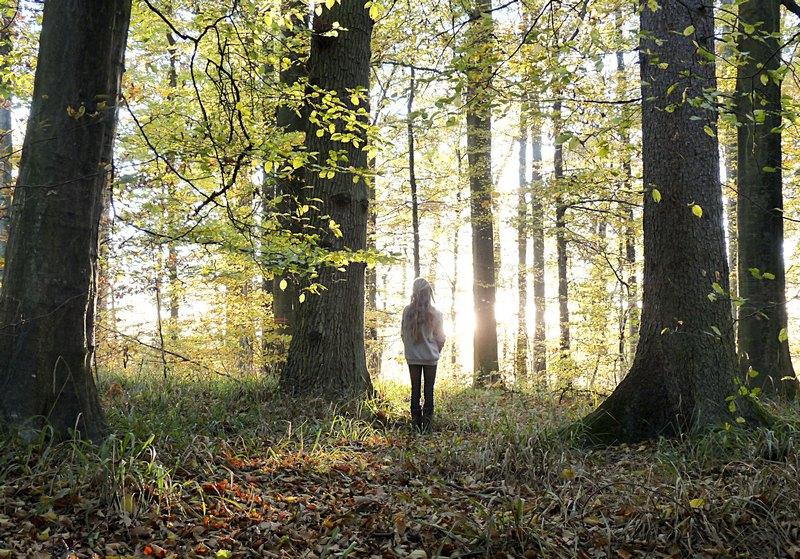 Blogger aus dem schönen Schwarzwald_1