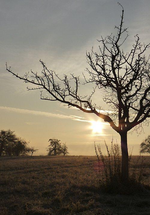 Morgensonne - perfekter Tag