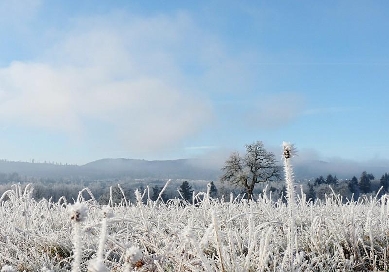 gefrorener Nebel