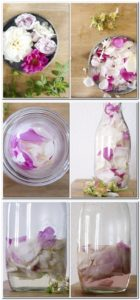 Rosenwasser selber machen ohne Destillation
