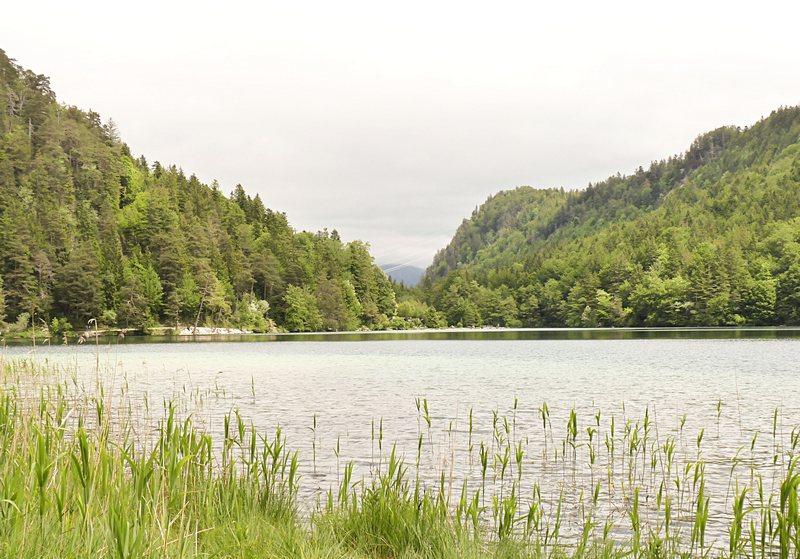 15_Der Alatsee kurz vor Füssen liegt am wasserläuferwegP1320017_1